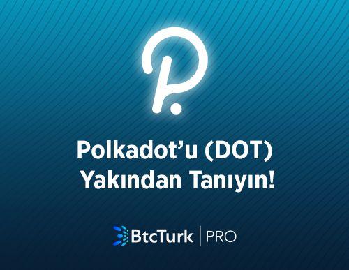 Polkadot'u (DOT) Yakından Tanıyın