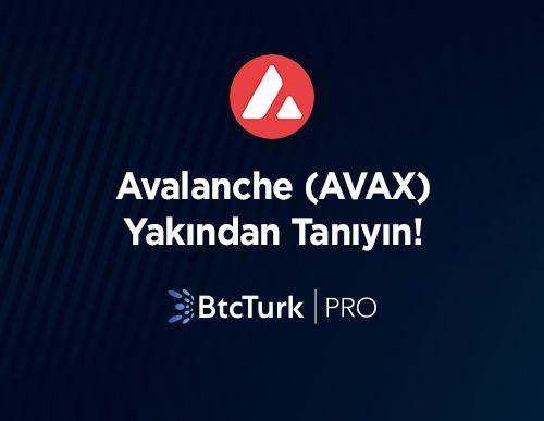 Avalanche'ı (AVAX) Yakından Tanıyın