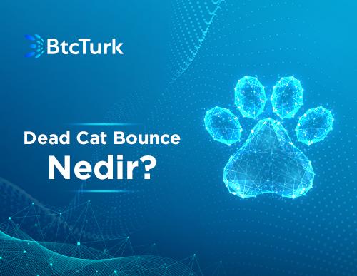 Ölü Kedi Sıçraması (Dead Cat Bounce) Nedir?